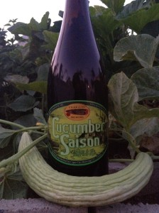 Cigar City Cucumber Saison with an Armenian cucumber in my garden